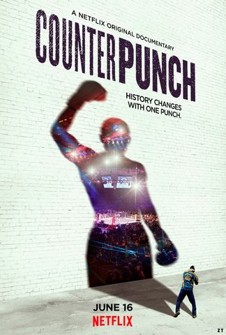 CounterPunch WEB-DL 720p French