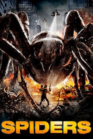 Spiders DVDRIP French